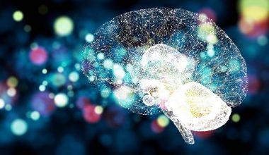 Webinar: Interoception Primes Emotional Processing: Multimodal Evidence from Neurodegeneration