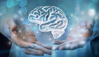 El desafío de liderar la salud cerebral