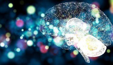 BrainLat UAI: investigar internacionalmente la salud cerebral